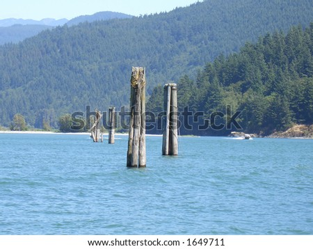 Wooden Posts in the River - stock photo