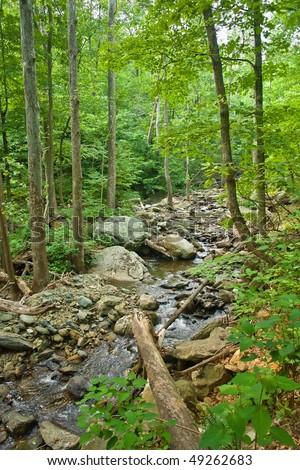 Wooden river in Shenandoah national park, VA, USA - stock photo
