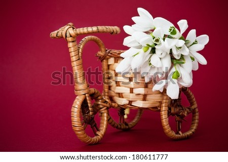 Wooden rods bicycle flowerpot with spring flowers on red background - stock photo