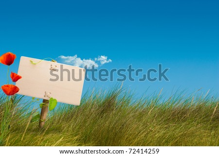 wooden sign on the center of a green wild land with a blue sky, with one cloud, horizontal image - stock photo