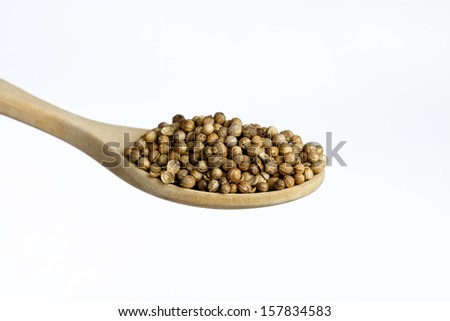 Wooden spoon, full of  coriander, isolated on white background - stock photo