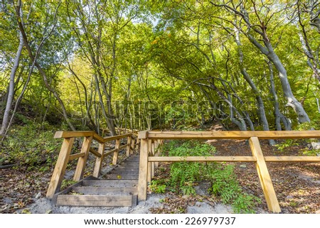 Wooden stairways in the National Park - stock photo