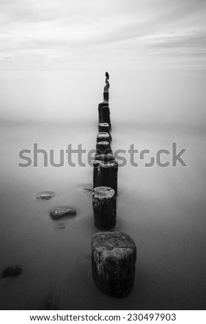 Wooden stakes on sandy beach in north Poland. Baltic Sea.Black and white with grain added/Moody Baltic Sea  - stock photo