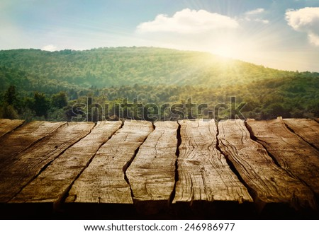 Wooden table. Spring design with pine forest and empty display. Space for your montage - stock photo