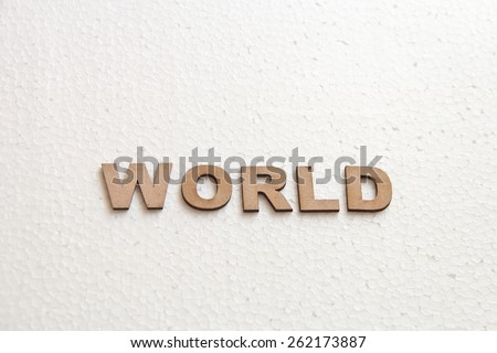 Wooden text on white background that is for world concept - stock photo