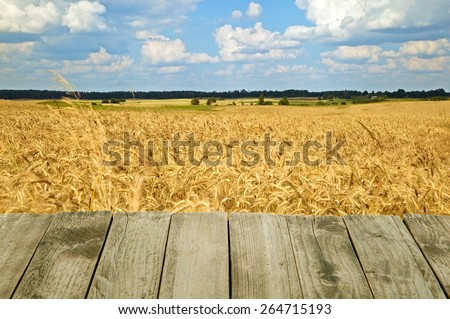 Wooden texture of wood composition with nature background - stock photo