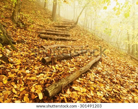 Wooden trunk steps in autumn forest, tourist footpath.  - stock photo