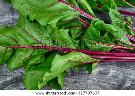 Wooden vintage background for design with fragment bright green, beautiful beet haulm. Top view - stock photo