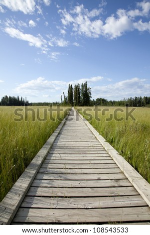 Wooden walkway across wetland marsh - stock photo