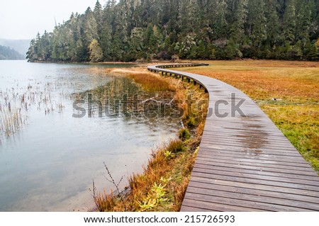 wooden walkway in raining at Pudacuo(Potatso) national park  in the Shangri-La(Zhongdian), Yunnan, China. - stock photo