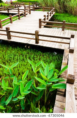 wooden winding path with railing surrounded by green plants. - stock photo