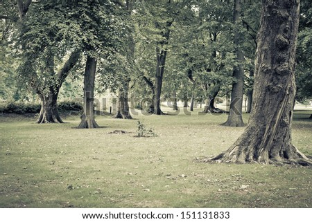 Woodland and park in muted vintage tones - stock photo
