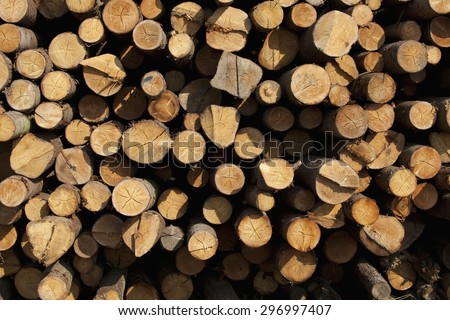 Woodpile cutting timber for the forestry and timber industry - stock photo