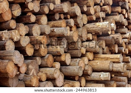 Woodpile of Cut Logs on the Lumberyard - stock photo
