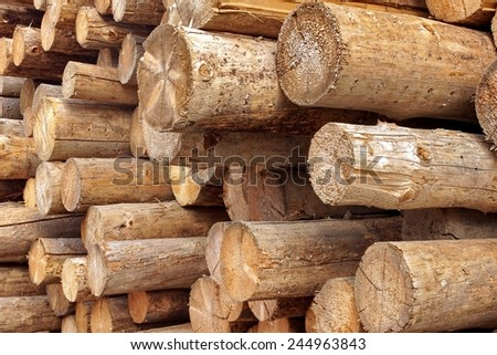Woodpile of cutting wood logs Background or Texture - stock photo