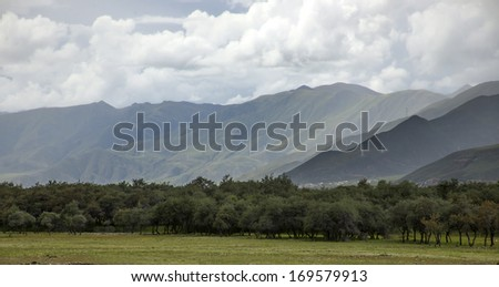 Woods Mountains - stock photo