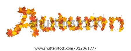 Word autumn made of bright maple leaves on white background. - stock photo