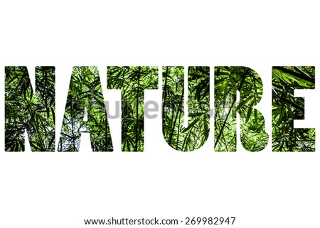 Word NATURE over bamboo. - stock photo