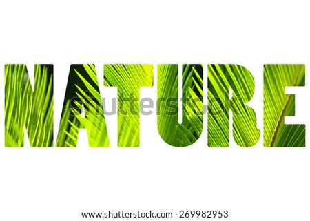 Word NATURE over palm leaves. - stock photo
