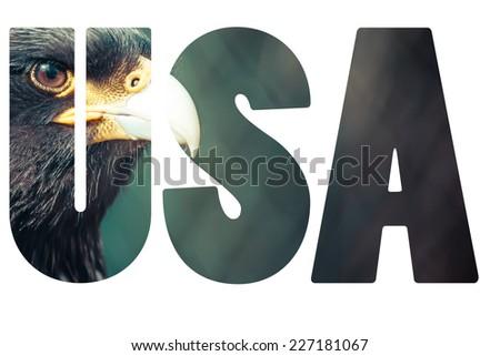 Word USA with bald eagle. - stock photo