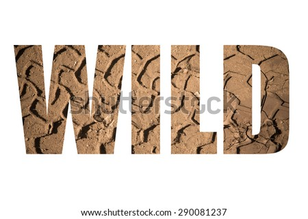 Word WILD over the imprint of the tire on wet sand. Toned. - stock photo