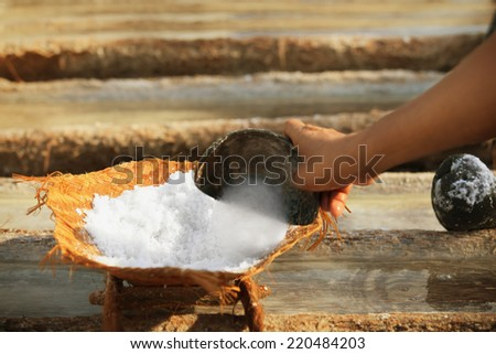 Work on the production of salt, the traditional method. Bali, Indonesia. - stock photo