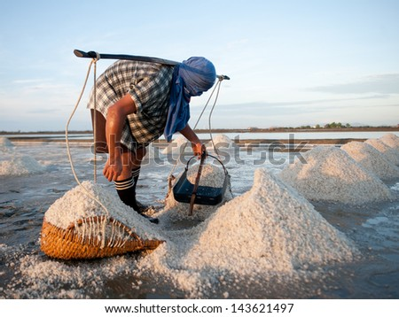 Worker at salt extraction in morning - stock photo