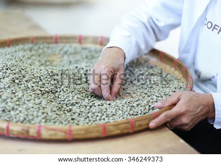 worker select coffee berries seed broken by hand after dry processing. - stock photo