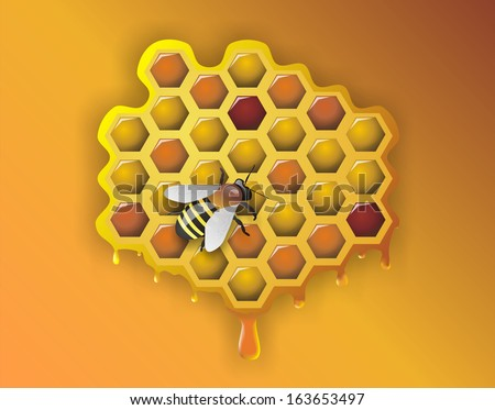 Working Bee and Honeycomb - Illustration - stock photo