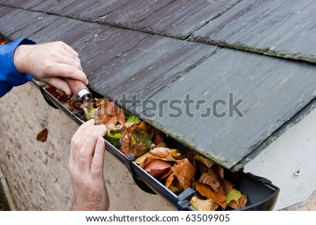 Working Hands Workman Clearing Autumn Leaves from Gutter - stock photo
