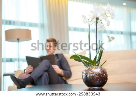 Working in hotel room. Selective focus image of confident young businessman in suit reading documents while sitting in hotel room with a beautiful flower in the foreground - stock photo