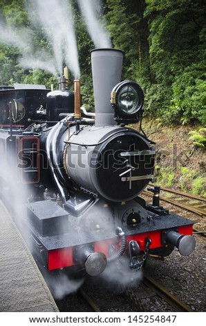 Working steam train in Tasmanian wilderness. Abt railway services (operating as the West Coast Wilderness Railway)  was important for tourism  on West Coast of Tasmania, Australia. - stock photo