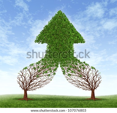 Working together business symbol and financial merger concept as two trees connecting  and merging as one forming a healthy growing arrow shaped tree as an icon of teamwork success. - stock photo