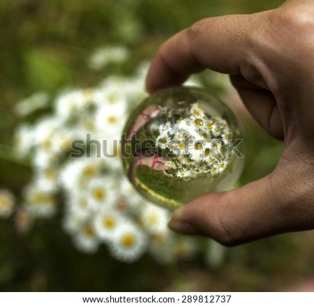 World environmental concept. Crystal globe in human hand. Reflection with chamomiles and children's feet. Selective focus on the reflection. - stock photo