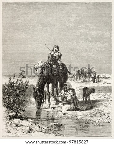 Wounded horse watering, old illustration. Created by Girardet, published on Magasin Pittoresque, Paris, 1882 - stock photo