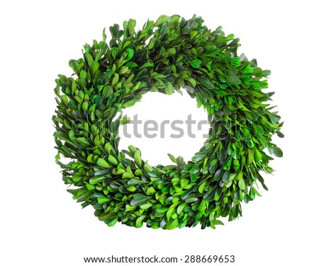 Wreath made with real natural green boxwood leaves isolated on white background.   - stock photo