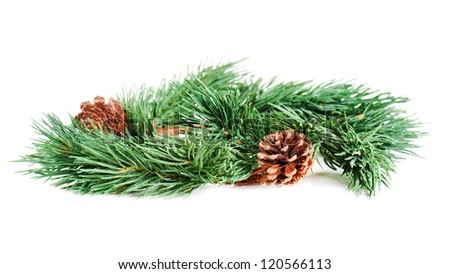 wreath of fir branches isolated on white background, selective focus - stock photo