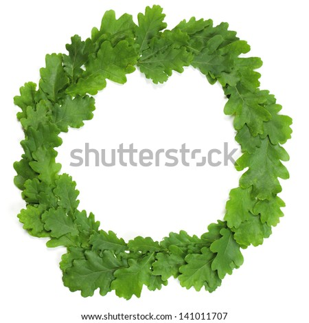 Wreath of oak leaves. Isolated on white. Latvian Midsummer holiday symbol. - stock photo