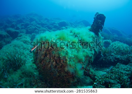 Wreck of Saphis, Méditerranée sea - stock photo
