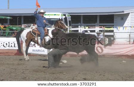 Wrestling a Steer - stock photo