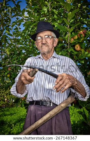 Wrinkled and expressive old farmer sharpening his scythe with an apple tree in the background. - stock photo