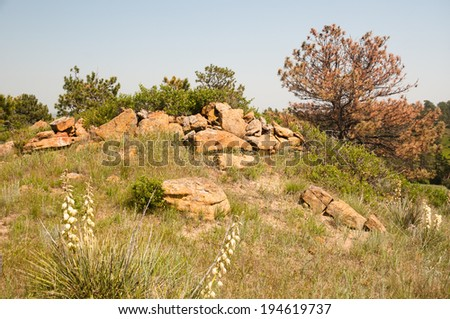 Wyoming Landscape in the Summer. - stock photo