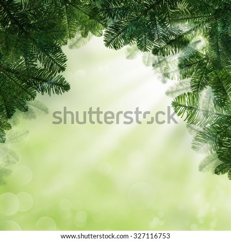 Xmas Background with Christmas Tree Branch. Green Fir Border with Light and Sparkle - stock photo