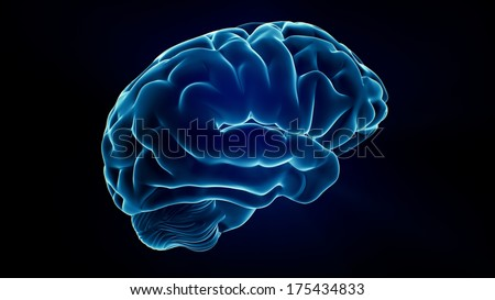 Xray Brain isolated on black background - stock photo