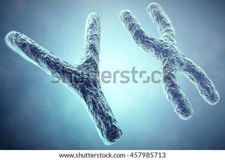 XY Chromosome concept. Male Heterogametic Sex. 3d illustration - stock photo