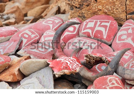 Yak skull decorated with Buddhist mantras, Tibet - stock photo