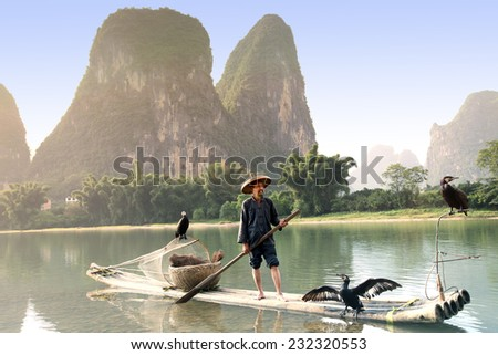 YANGSHUO - JUNE 18: Chinese man fishing with cormorants birds in Yangshuo, Guangxi region, traditional fishing use trained cormorants to fish, June 18, 2012 Yangshuo in Guangxi, China - stock photo