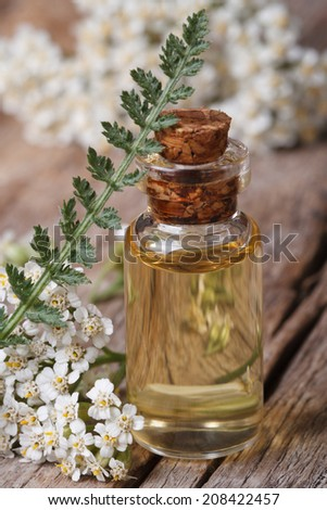yarrow oil in a bottle with flowers on the table. vertical macro   - stock photo