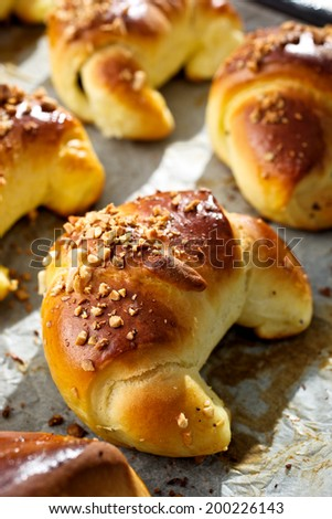 Yeast croissant with poppy seeds and nuts - stock photo