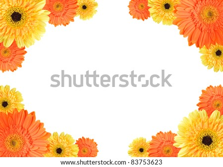 Yellow and orange daisy-gerbera flowers create a frame on white background - stock photo